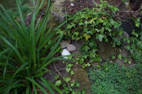 entretien jardin alsace